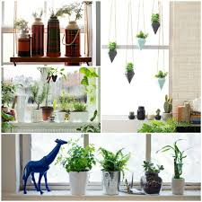 Window Sill Inspiration Window Sill Plants Inspiration Mellanie Design