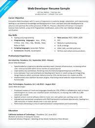resume objectives writing tips junior web developer resume objective sle writing tips companion