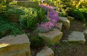 Rock In Garden Kentucky Plant And Wildlife Rock Gardens A Great Zen