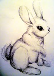 rabbit sketch by joy f on deviantart