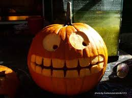 pumpkin decoration use pumpkin photos for creative carving ideas