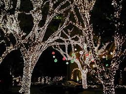 christmas light park near me 39 best centennial park christmas ideas images on pinterest xmas