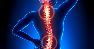 pain body 3 exercises that can realign your body ease low back pain herbs info
