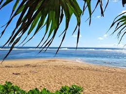 Kauai Cottages On The Beach by Ocean Front Cottage With 2 Bedrooms Hale Vrbo