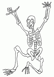free printable anatomy coloring pages anatomy of a bone coloring free printable skeleton coloring pages