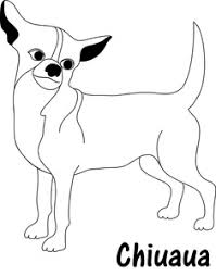chihuahua clipart image little chihuahua dog with the text