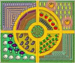 vegetable garden design layout zcbmz decorating clear