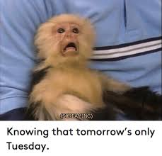 Tuesday Funny Memes - screaming knowing that tomorrow s only tuesday funny meme on me me
