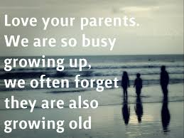 quote quote love parents love quotes dobre for