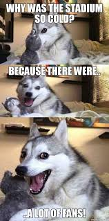 such pun much wow worst puns pun dog and humor