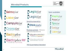 bureau pcr pcr based tools for the detection of food borne pathogens ppt