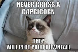 Capricorn Meme - capricorn grumpy cat quickmeme