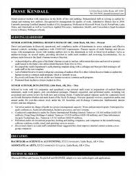 Internal Resume Examples by Domino Developer Cover Letter