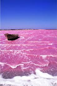 Pink Lake Pink Lake Senegal African Travels