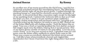 a sample of a descriptive essay resources the writing book teaching writing just got easier fireman saves kitten writing example lesson ideas