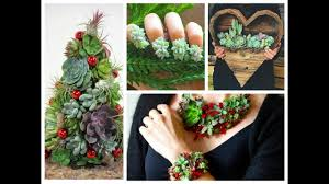 diy succulents crafts ideas amazing succulent planting projects