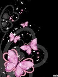 glitter wallpaper with butterflies colourful butterflies butterflies photo 21803664 fanpop
