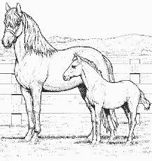 dessin de coloriage cheval à imprimer cp07145