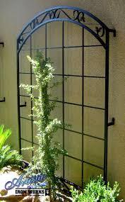 best 25 wrought iron trellis ideas on small garden