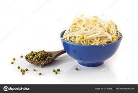 cuisiner le soja frais germes de soja frais sur blanc photographie banprik 151757916