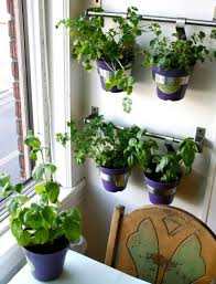 Wall Hanging Planters by Indoor Wall Mounted Planters Home Design Ideas