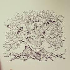 family tree paso evolist co
