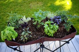 grow food in small spaces
