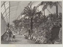 the colonial and indian exhibition the fernery in the new zealand