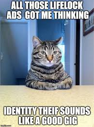 Thinking Cat Meme - take a seat cat meme imgflip