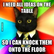 Business Cat Memes - caboodle business cat best new cat meme catster kittens