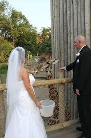 Wedding Reception Venues Cincinnati 28 Best Cincinnati Wedding Venues Images On Pinterest Wedding