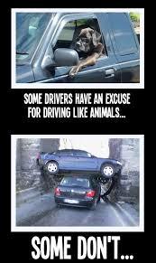Driving Meme - reckless driving behavior meme five star towingfive star towing