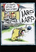 the far side greeting cards