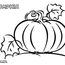 thanksgiving pumpkins coloring pages pumpkin coloring pages halloween arts thanksgiving pumpkin