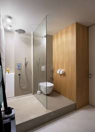 simple bathroom ideas bathroom walk in shower and glass enclosure with modern toilet