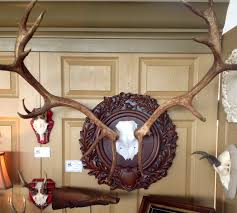 home interior deer pictures home decor simple elk home decor wonderful decoration ideas