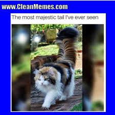 Clean Memes - clean memes 10 24 2017 clean memes