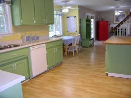 Paint Wood Kitchen Cabinets Kitchen Astounding Image Of Kitchen Decoration Using Light Yellow