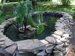 Backyard Pond Supplies by Backyard Turtle Pond