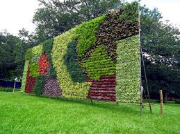 garden how refreshing with vertical garden in our ecofriendly