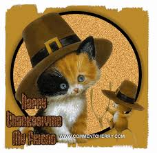 thanksgiving catmouse gif