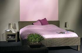 quelle peinture pour une chambre à coucher peinture murale chambre adulte peinture murale quelle couleur
