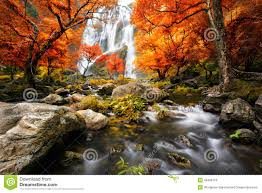 waterfall in the autumn stock photo image 46408178