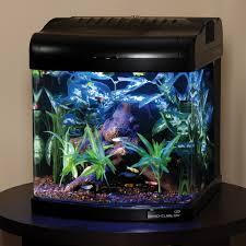 Dramatic Aquascapes Aquarium Set Up Nano Cube Aquariums