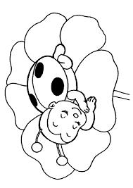 ladybug coloring pages sleeping flower coloringstar