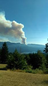Wild Fire Columbia Gorge by Police Fireworks Likely Caused Eagle Creek Wildfire In Columbia