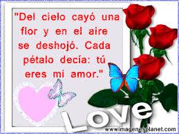 imagenes de amor con rosas animadas imagen de amor con rosas imagenes de rosas con frases de amor