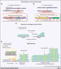 key principles and clinical applications of u201cnext generation u201d dna