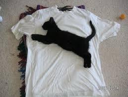 Baju Original baju original utk dijual
