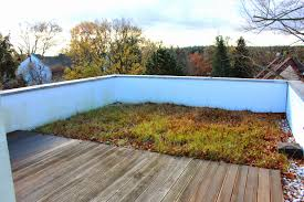tobias u0027s rooftop garden in berlin fine gardening
